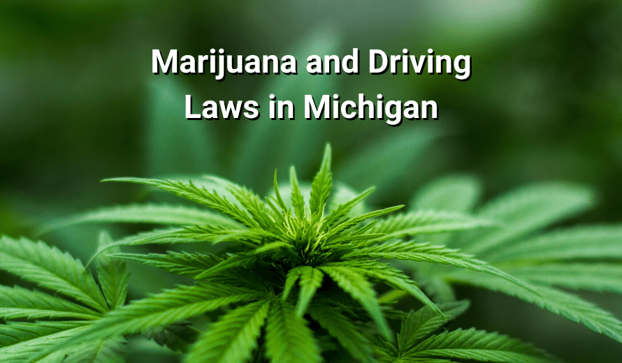 Marijuana and Driving Laws in Michigan: What You Need To Know
